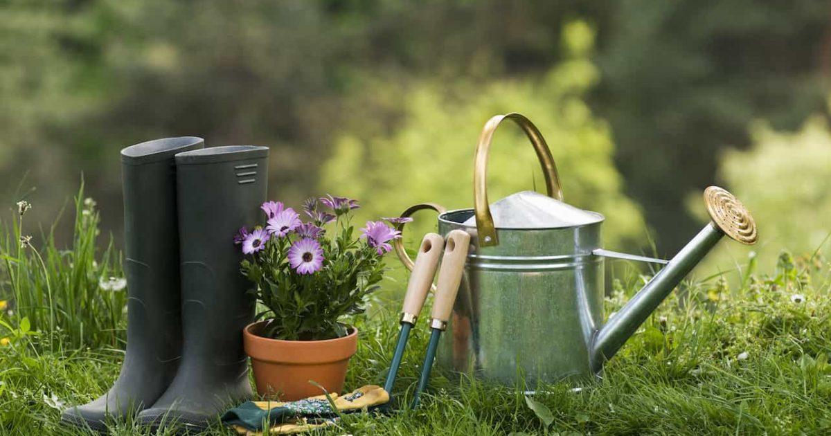 4 astuces pour réussir son projet de jardinage